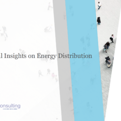 Global Insights on Energy Distribution